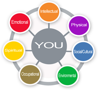 You and The Wellness wheel